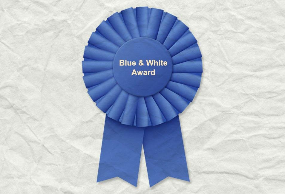 2019 Blue & White Awards